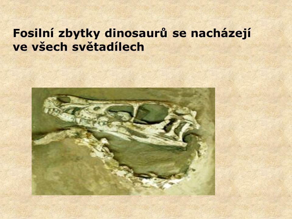 Fosilní zbytky dinosaurů se nacházejí ve všech světadílech