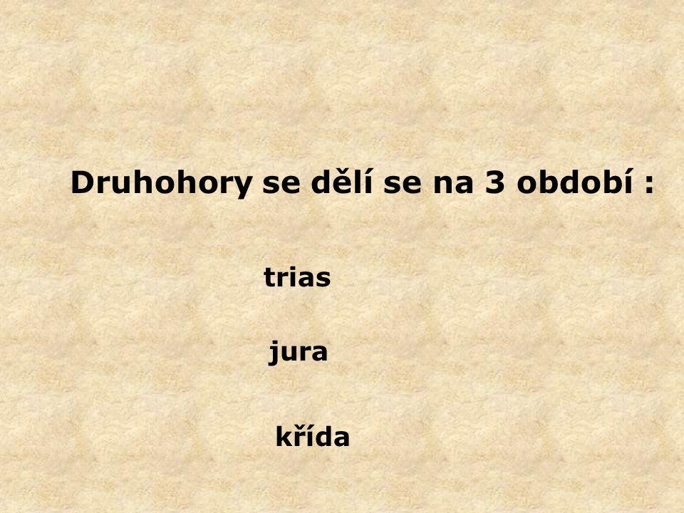 Druhohory se dělí se na 3 období : trias jura křída