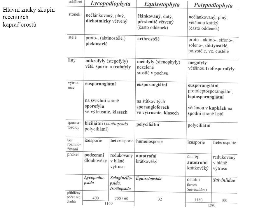 Kapraďorosty, výtrusné cévnaté rostliny - mikrofylní x makrofylní vývoj.