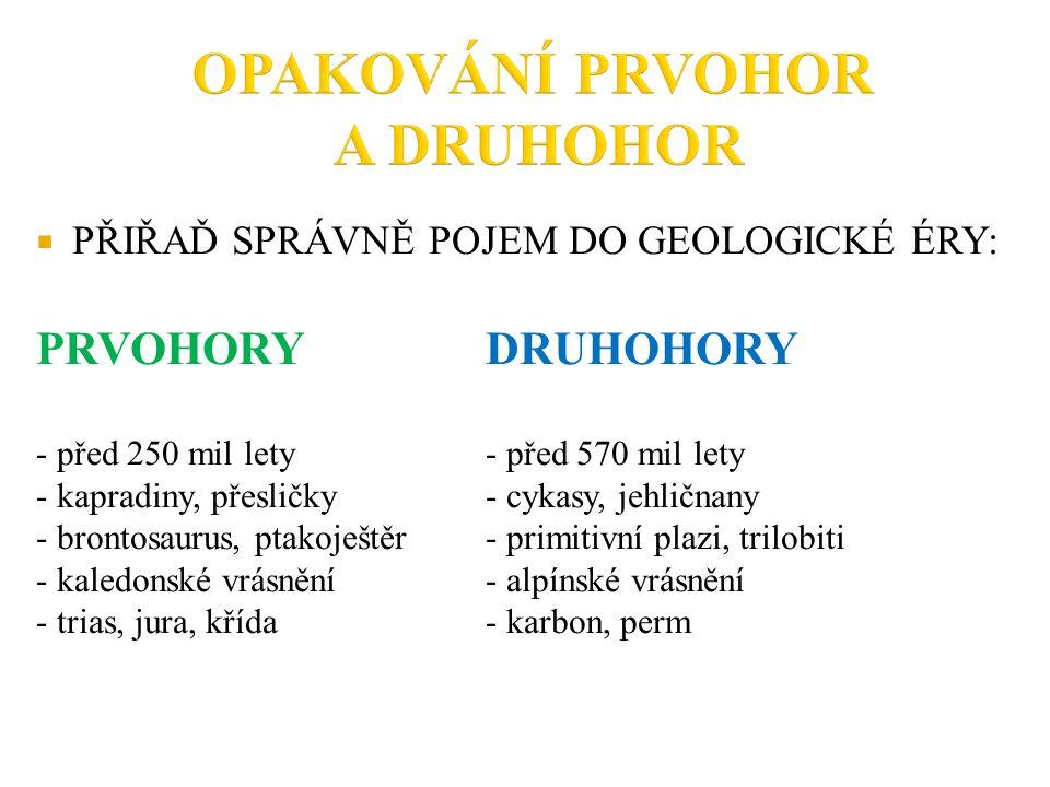  PŘIŘAĎ SPRÁVNĚ POJEM DO GEOLOGICKÉ ÉRY: PRVOHORYDRUHOHORY - před 250 mil lety - před 570 mil lety - kapradiny, přesličky- cykasy, jehličnany - brontosaurus, ptakoještěr- primitivní plazi, trilobiti - kaledonské vrásnění- alpínské vrásnění - trias, jura, křída- karbon, perm