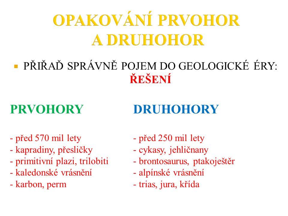  PŘIŘAĎ SPRÁVNĚ POJEM DO GEOLOGICKÉ ÉRY: ŘEŠENÍ PRVOHORYDRUHOHORY - před 570 mil lety - před 250 mil lety - kapradiny, přesličky- cykasy, jehličnany - primitivní plazi, trilobiti- brontosaurus, ptakoještěr - kaledonské vrásnění- alpínské vrásnění - karbon, perm- trias, jura, křída