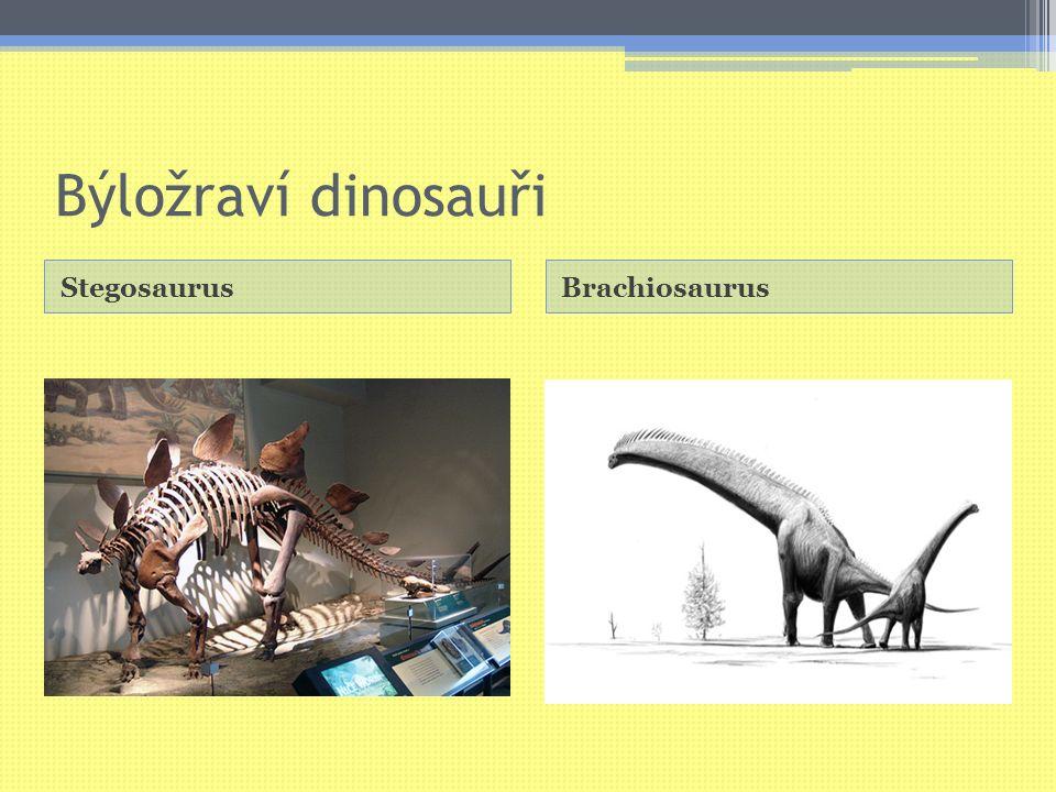Býložraví dinosauři StegosaurusBrachiosaurus