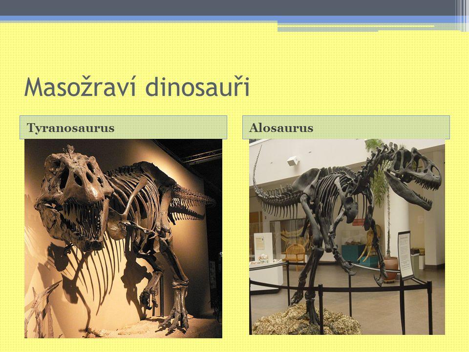 Masožraví dinosauři TyranosaurusAlosaurus