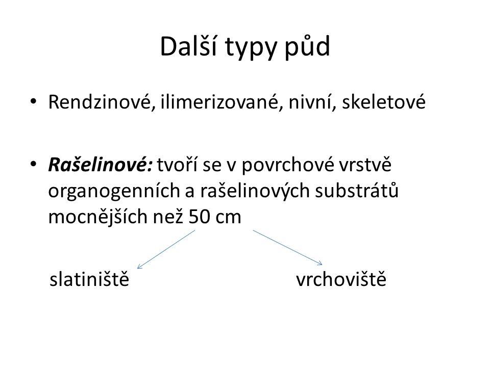 Další typy půd Rendzinové, ilimerizované, nivní, skeletové Rašelinové: tvoří se v povrchové vrstvě organogenních a rašelinových substrátů mocnějších než 50 cm slatiniště vrchoviště