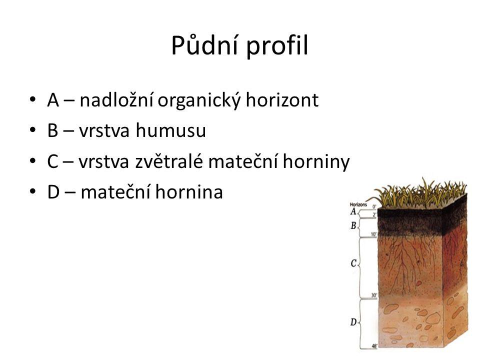 Půdní profil A – nadložní organický horizont B – vrstva humusu C – vrstva zvětralé mateční horniny D – mateční hornina