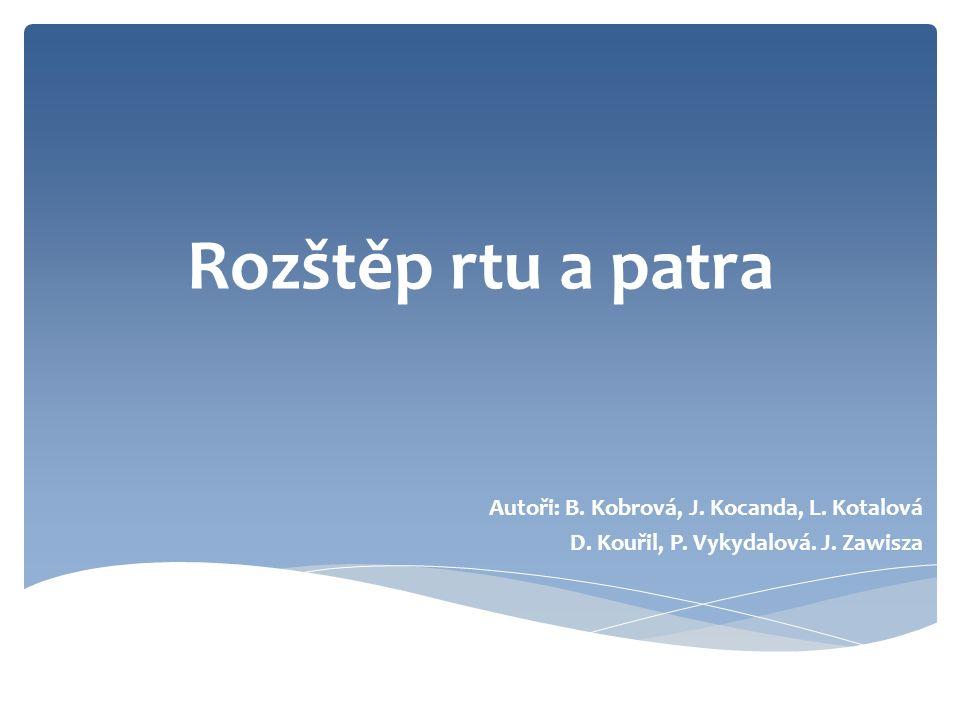 Rozštěp rtu a patra Autoři: B. Kobrová, J. Kocanda, L.