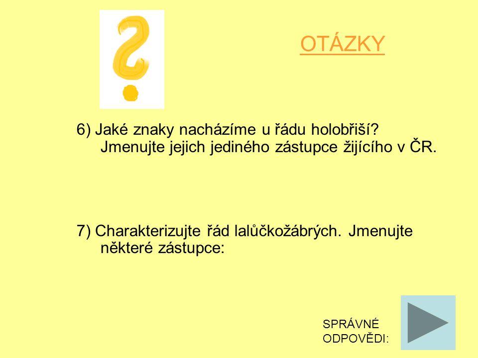 OTÁZKY 6) Jaké znaky nacházíme u řádu holobřiší. Jmenujte jejich jediného zástupce žijícího v ČR.