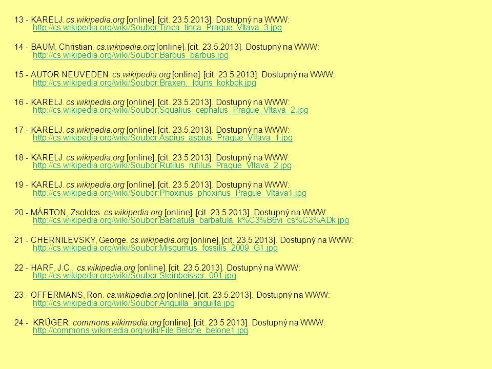 13 - KARELJ. cs.wikipedia.org [online]. [cit. 23.5.2013].