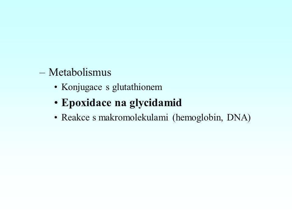 –Metabolismus Konjugace s glutathionem Epoxidace na glycidamid Reakce s makromolekulami (hemoglobin, DNA)