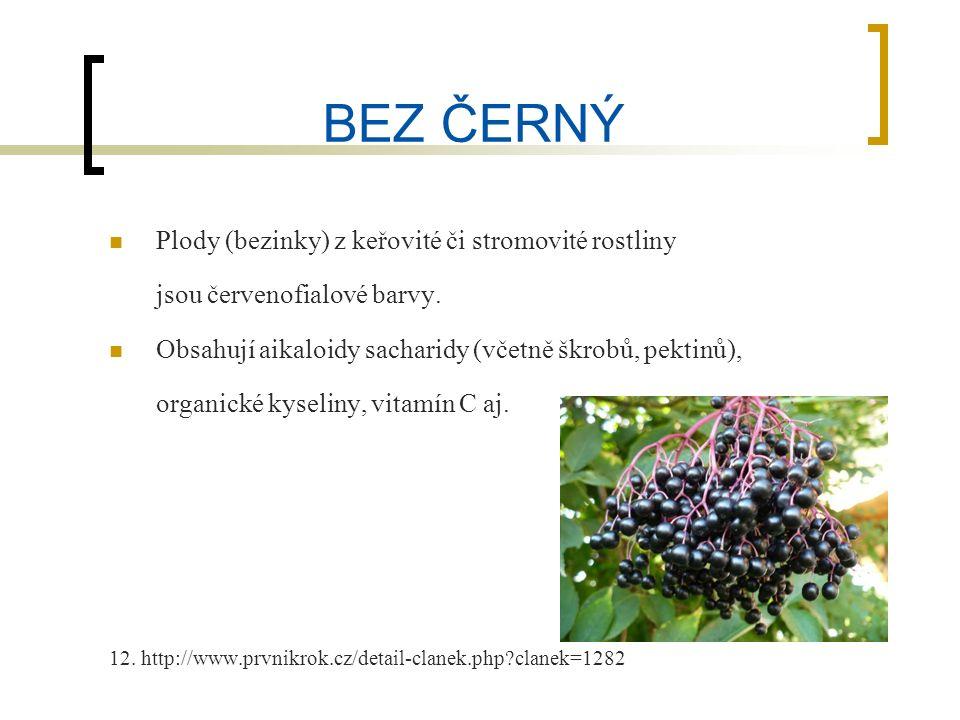 BEZ ČERNÝ Plody (bezinky) z keřovité či stromovité rostliny jsou červenofialové barvy.