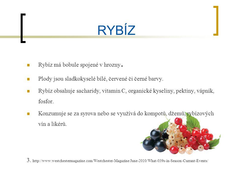 RYBÍZ Rybíz má bobule spojené v hrozny. Plody jsou sladkokyselé bílé, červené či černé barvy.