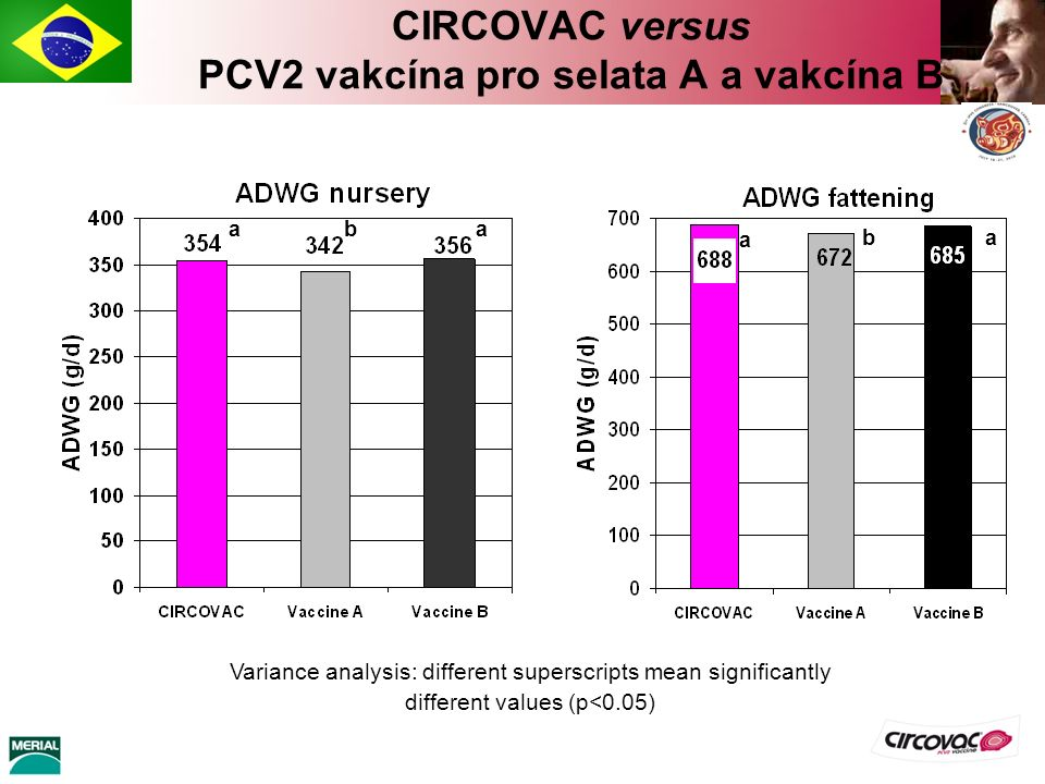 CIRCOVAC versus PCV2 vakcína pro selata A a vakcína B a Variance analysis: different superscripts mean significantly different values (p<0.05) ba a ab