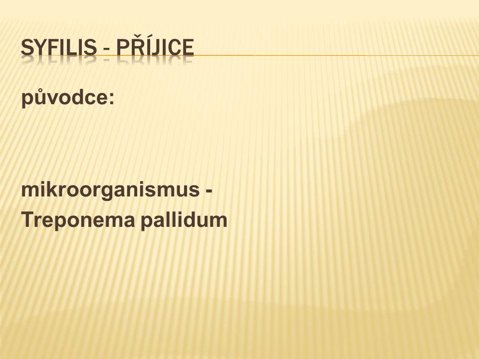 původce: mikroorganismus - Treponema pallidum