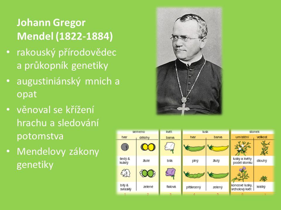 Johann Gregor Mendel (1822-1884) rakouský přírodovědec a průkopník genetiky augustiniánský mnich a opat věnoval se křížení hrachu a sledování potomstva Mendelovy zákony genetiky