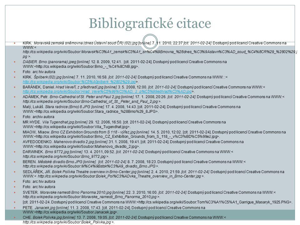 Bibliografické citace KIRK. Moravská zemská sněmovna (dnes Ústavní soud ČR) (02).jpg [online].