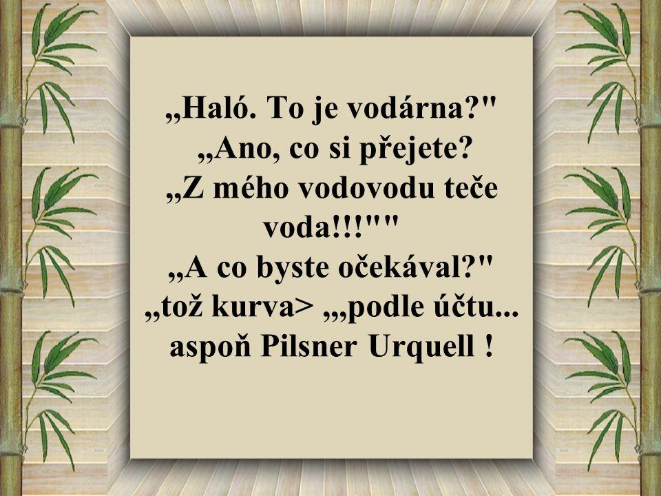 ,,Haló.