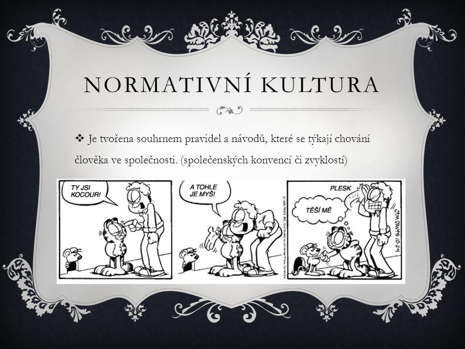 NORMATIVNÍ KULTURA  Je tvořena souhrnem pravidel a návodů, které se týkají chování člověka ve společnosti. (společenských konvencí či zvyklostí)