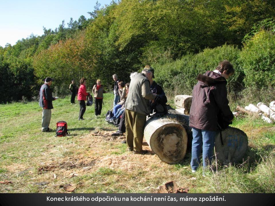 Pro mimořádnou přírodní hodnotu a čistotu ovzduší byla Chráněná krajinná oblast Křivoklátsko roku 1977 prohlášena Biosférickou reservací UNESCO.