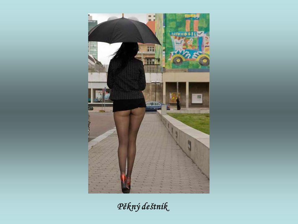 Pěkný deštník