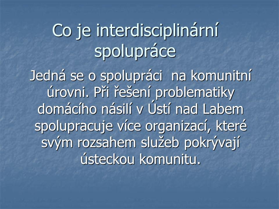 Co je interdisciplinární spolupráce Jedná se o spolupráci na komunitní úrovni.