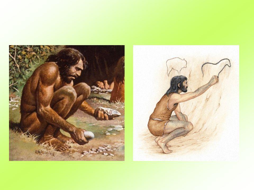 Homo sapiens ( člověk rozumný) žil ve středním paleolitu před 250 000-40 000 let př.n.l.