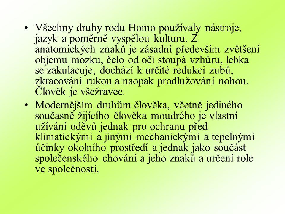 Všechny druhy rodu Homo používaly nástroje, jazyk a poměrně vyspělou kulturu. Z anatomických znaků je zásadní především zvětšení objemu mozku, čelo od