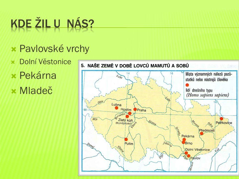  Pavlovské vrchy  Dolní Věstonice  Pekárna  Mladeč