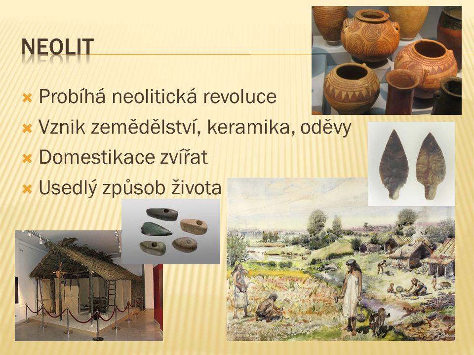  Probíhá neolitická revoluce  Vznik zemědělství, keramika, oděvy  Domestikace zvířat  Usedlý způsob života