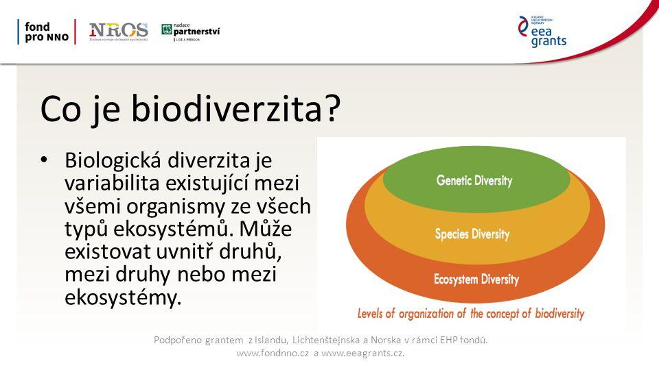 Co je biodiverzita.