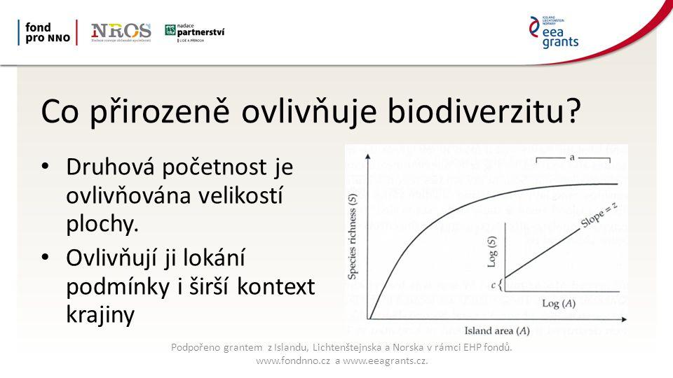 Co přirozeně ovlivňuje biodiverzitu. Druhová početnost je ovlivňována velikostí plochy.