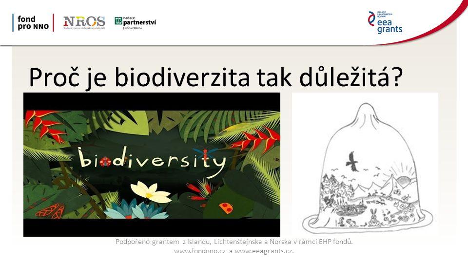 Proč je biodiverzita tak důležitá.