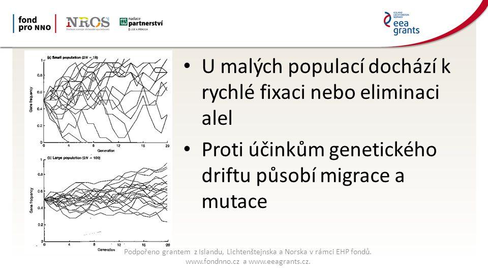 U malých populací dochází k rychlé fixaci nebo eliminaci alel Proti účinkům genetického driftu působí migrace a mutace Podpořeno grantem z Islandu, Lichtenštejnska a Norska v rámci EHP fondů.