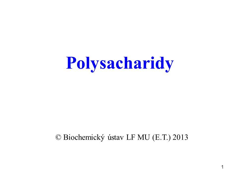 1 Polysacharidy © Biochemický ústav LF MU (E.T.) 2013
