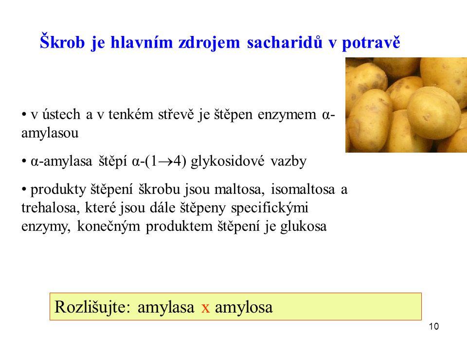 10 Škrob je hlavním zdrojem sacharidů v potravě v ústech a v tenkém střevě je štěpen enzymem α- amylasou α-amylasa štěpí α-(1  4) glykosidové vazby produkty štěpení škrobu jsou maltosa, isomaltosa a trehalosa, které jsou dále štěpeny specifickými enzymy, konečným produktem štěpení je glukosa Rozlišujte: amylasa x amylosa