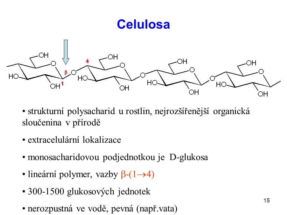 15 Celulosa strukturní polysacharid u rostlin, nejrozšířenější organická sloučenina v přírodě extracelulární lokalizace monosacharidovou podjednotkou je D-glukosa lineární polymer, vazby  -(1  4) 300-1500 glukosových jednotek nerozpustná ve vodě, pevná (např.vata)