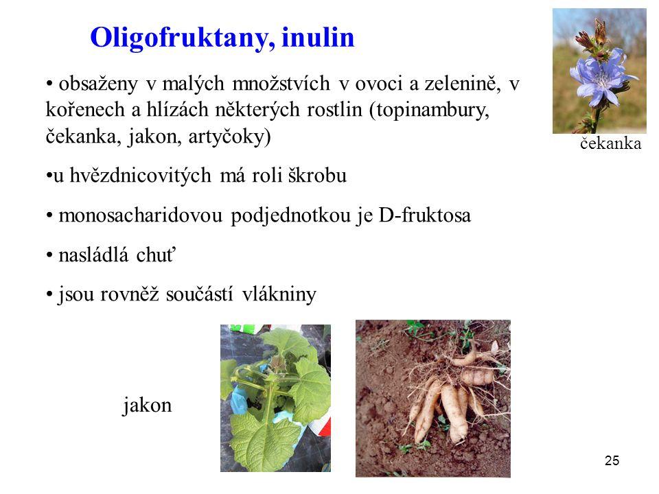 25 Oligofruktany, inulin obsaženy v malých množstvích v ovoci a zelenině, v kořenech a hlízách některých rostlin (topinambury, čekanka, jakon, artyčoky) u hvězdnicovitých má roli škrobu monosacharidovou podjednotkou je D-fruktosa nasládlá chuť jsou rovněž součástí vlákniny jakon čekanka