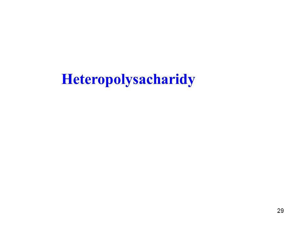 29 Heteropolysacharidy