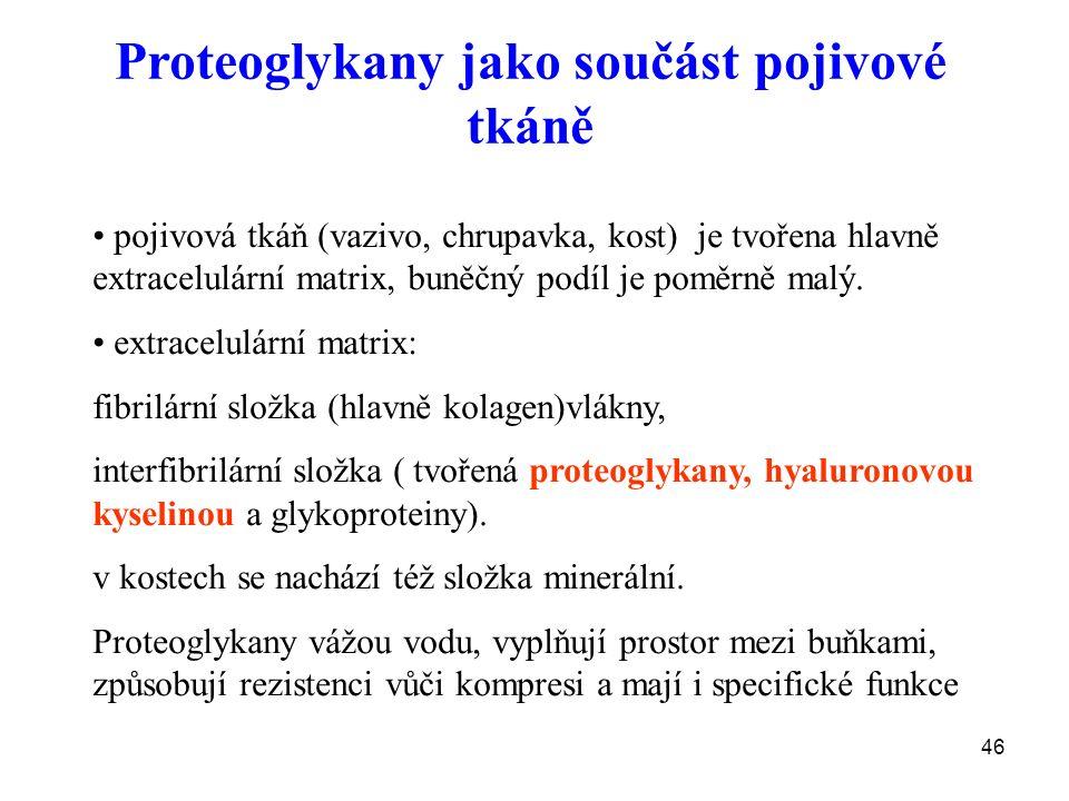 46 Proteoglykany jako součást pojivové tkáně pojivová tkáň (vazivo, chrupavka, kost) je tvořena hlavně extracelulární matrix, buněčný podíl je poměrně malý.