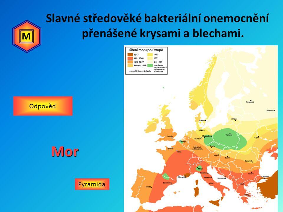 Slavné středověké bakteriální onemocnění přenášené krysami a blechami. PyramidaMor Odpověď M
