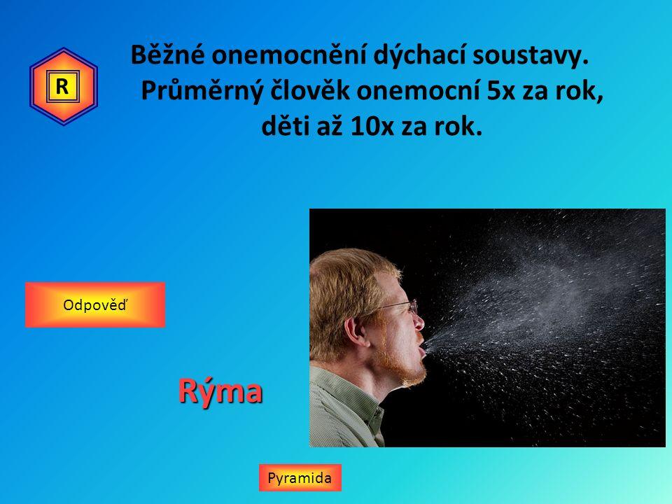 Běžné onemocnění dýchací soustavy. Průměrný člověk onemocní 5x za rok, děti až 10x za rok. PyramidaRýma Odpověď R