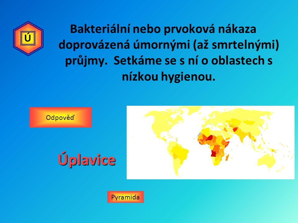 Bakteriální nebo prvoková nákaza doprovázená úmornými (až smrtelnými) průjmy. Setkáme se s ní o oblastech s nízkou hygienou. Pyramida OdpověďÚplavice