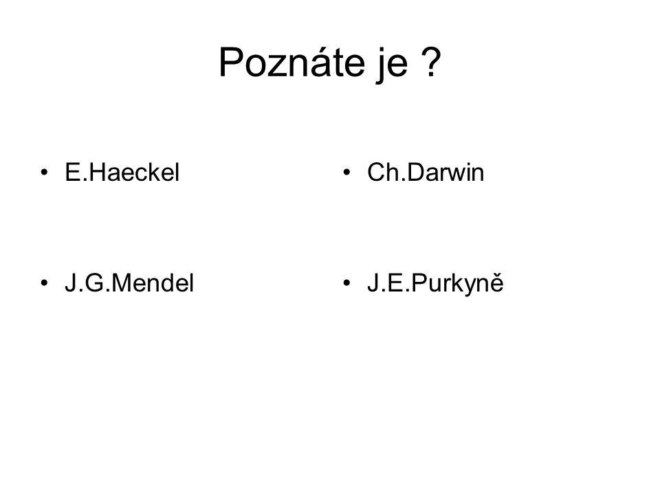E.Haeckel J.G.Mendel Ch.Darwin J.E.Purkyně