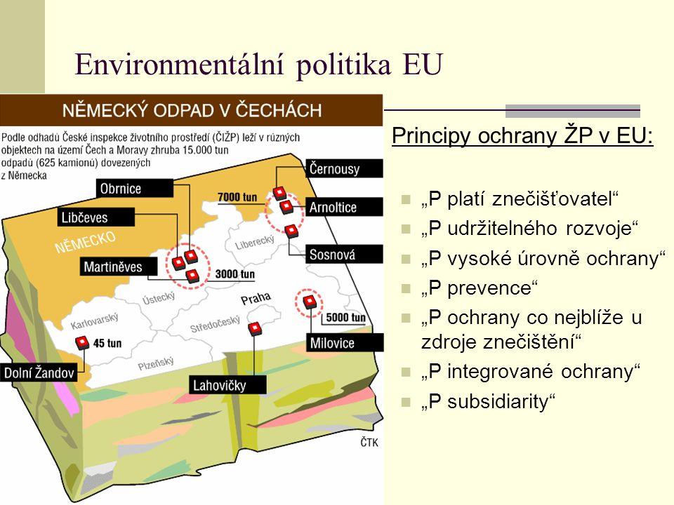 """Environmentální politika EU Principy ochrany ŽP v EU: """"P platí znečišťovatel"""" """"P udržitelného rozvoje"""" """"P vysoké úrovně ochrany"""" """"P prevence"""" """"P ochra"""