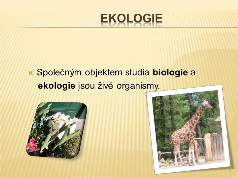  Společným objektem studia biologie a ekologie jsou živé organismy. 4