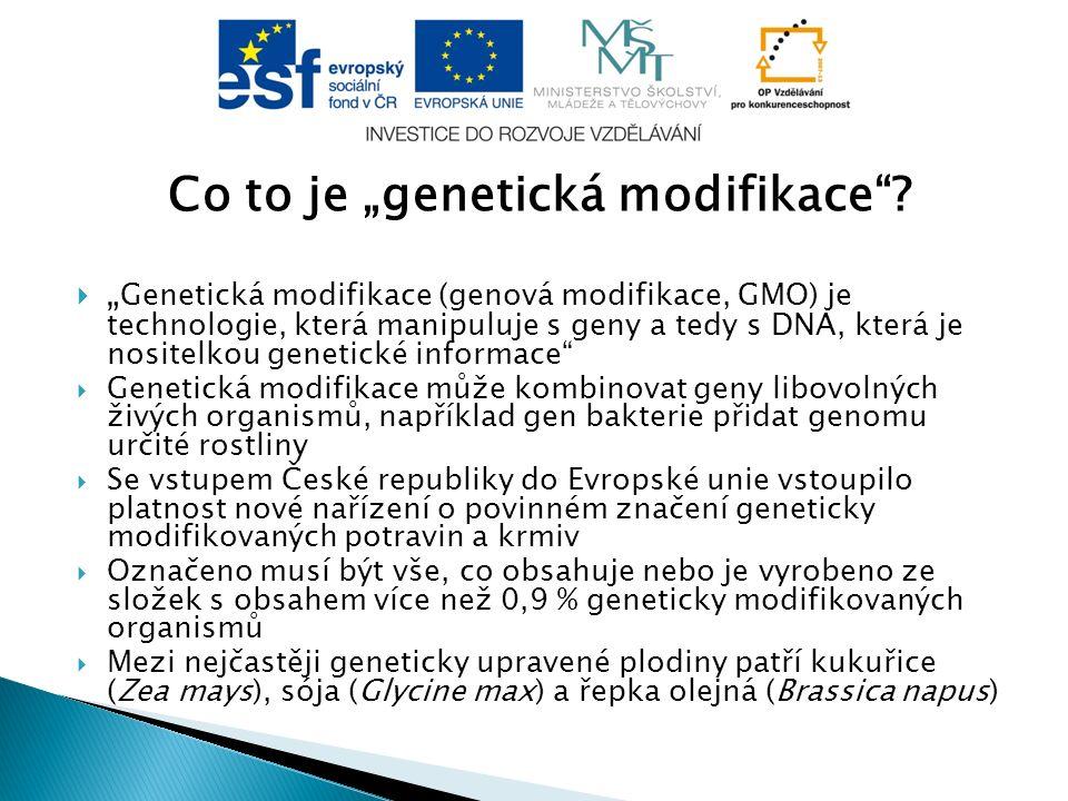 """Co to je """"genetická modifikace""""?  """" Genetická modifikace (genová modifikace, GMO) je technologie, která manipuluje s geny a tedy s DNA, která je nosi"""