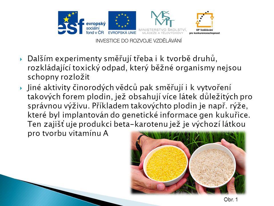 Modifikované potraviny a jejich rizika  Některá rizika jsou považována pouze za možná, jiná se již skutečně projevila.