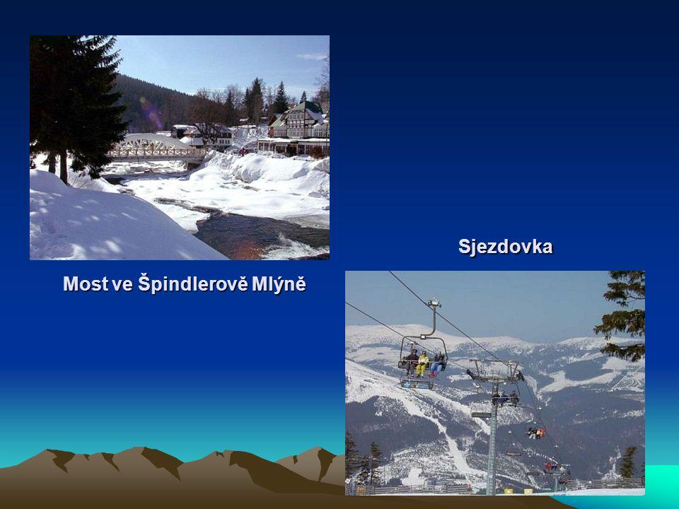Zdroj : Wikipedie Google České hory Eliška Rajmová