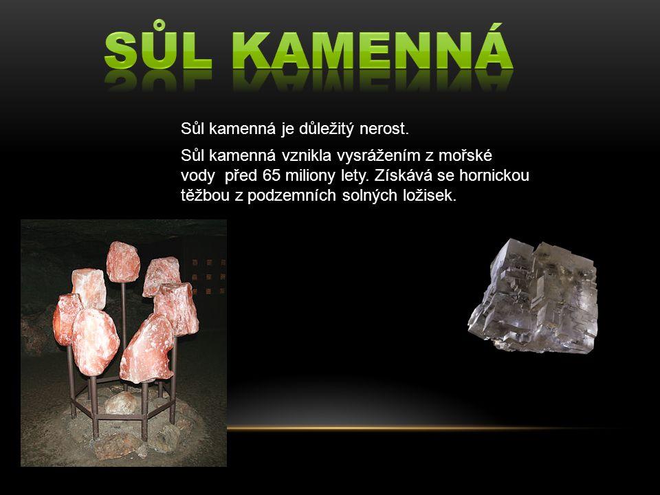 Sůl kamenná je důležitý nerost. Sůl kamenná vznikla vysrážením z mořské vody před 65 miliony lety.