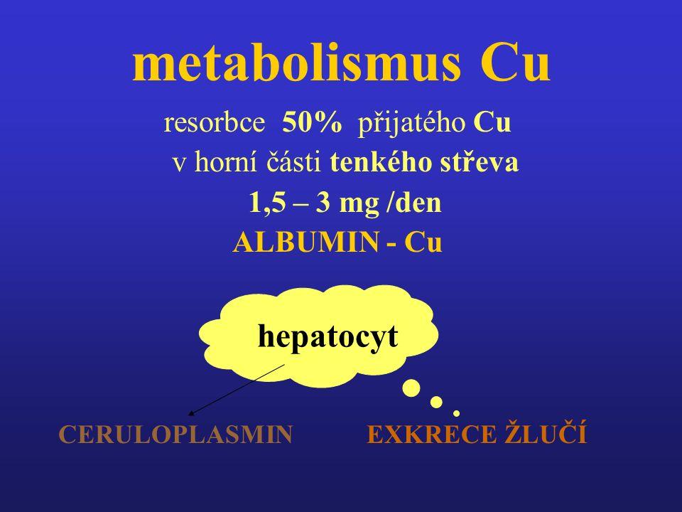 metabolismus Cu resorbce 50% přijatého Cu v horní části tenkého střeva 1,5 – 3 mg /den ALBUMIN - Cu CERULOPLASMIN EXKRECE ŽLUČÍ hepatocyt