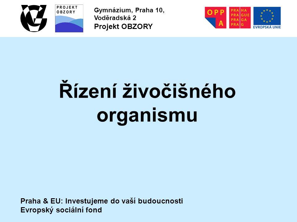 Praha & EU: Investujeme do vaší budoucnosti Evropský sociální fond Gymnázium, Praha 10, Voděradská 2 Projekt OBZORY Řízení živočišného organismu
